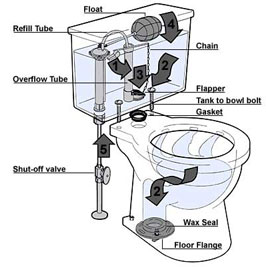 I m never fixing my toilet again mark 39 s blog for How does plumbing work